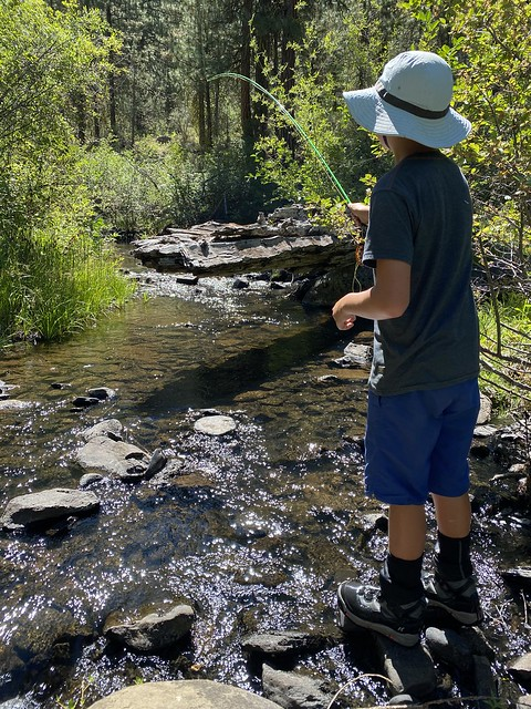 small stream angling