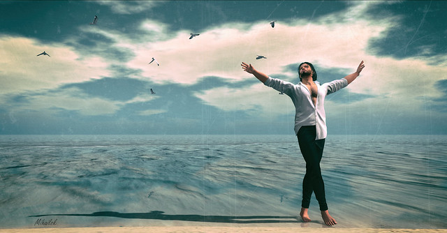 Dancing with seagulls