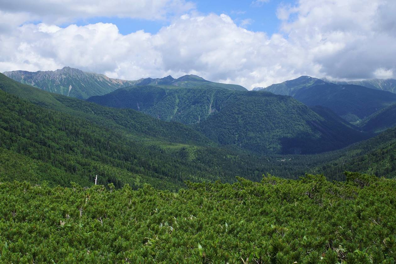 太郎平小屋から雲ノ平方面の展望