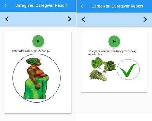 Selected screenshots of the feedback provided to     caregivers, which is done using pre-recorded audio messages (photo: ILRI).