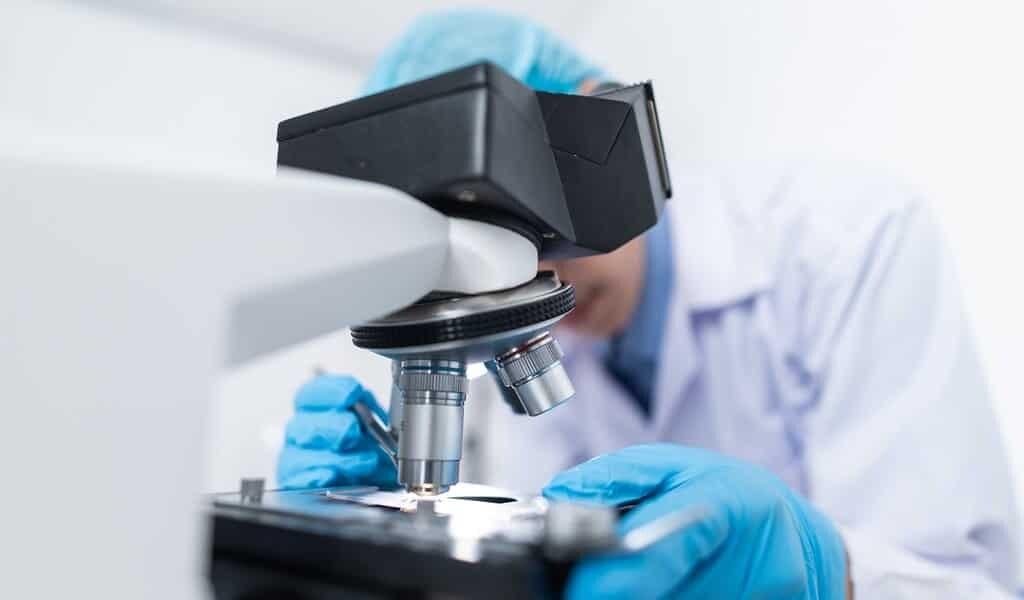 une-découverte-contre-le-paludisme-aiderait-contre-le-COVID-19
