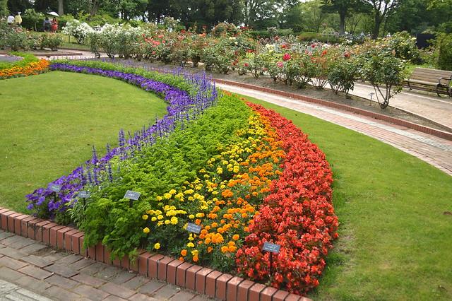 レインボー花壇