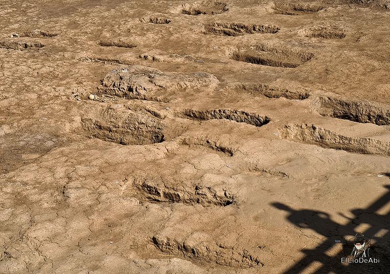 Las obras de la autovia entre La Rioja y Burgos descubre una necrópolis altomedieval en Grañón (10)