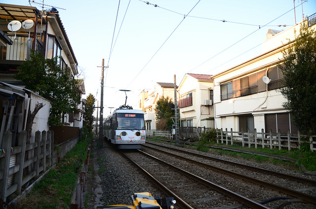 Tokyu Setagaya Line 300 Series in Maneki-neko Wrapping near Yamashita Station in 2018 March: 9