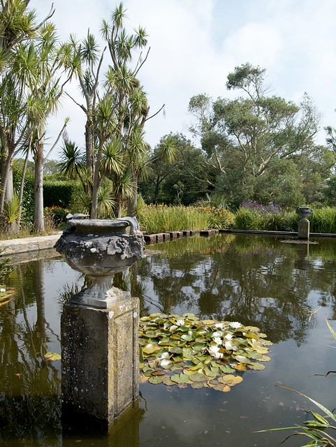 The formal pond  - Logan botanic garden. Port Logan, near Stranraer, Scotland
