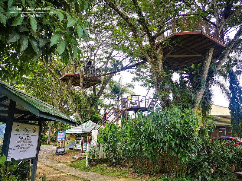 Sabah Tea Resort Restaurant 02