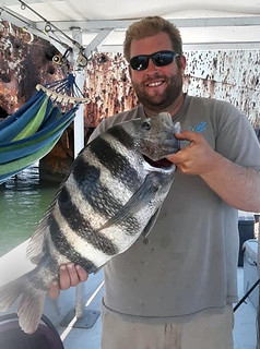 Photo of state record sheepshead caught by Daniel Mastronardi Jr.