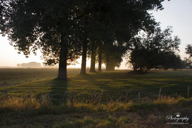 Morning atmosphere (#Explored)