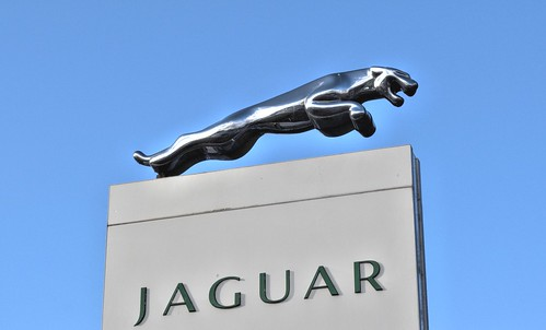 Jaguar | by Tony Worrall