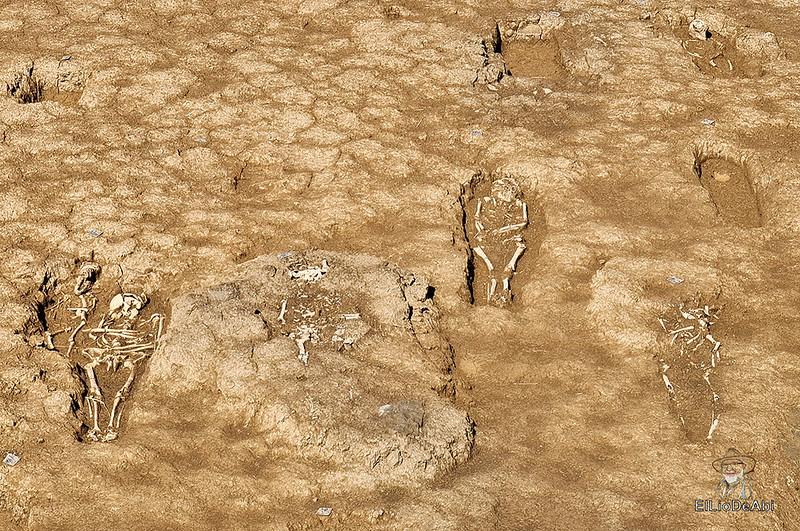 Las obras de la autovia entre La Rioja y Burgos descubre una necrópolis altomedieval en Grañón (12)