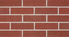 Commodore Velour Velour Texture red Brick