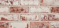 Bayport Antique Colonial Texture white Brick