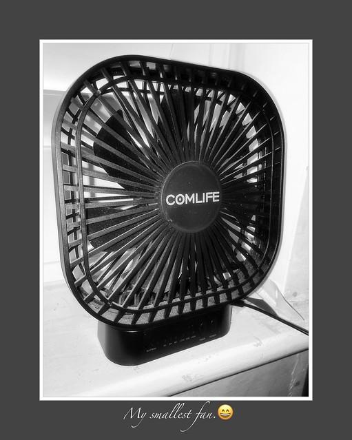 Smallest fan.