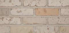 Polar Blend Antique Colonial Texture white Brick