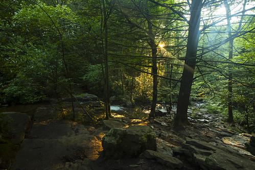 pa pennsylvania pocono poconos camping hiking summer beautiful sunset woods gorge peaceful jungle plants green lush humid hot canon 2020