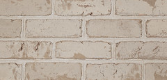 Polar White Clear Antique Colonial Texture white Brick