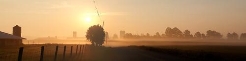 swallows barnswallow agriculture farm barn fence fog sunrise landscape panorama wilmottownship waterlooregion ontario canada