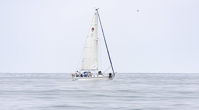 Out on the Open Ocean