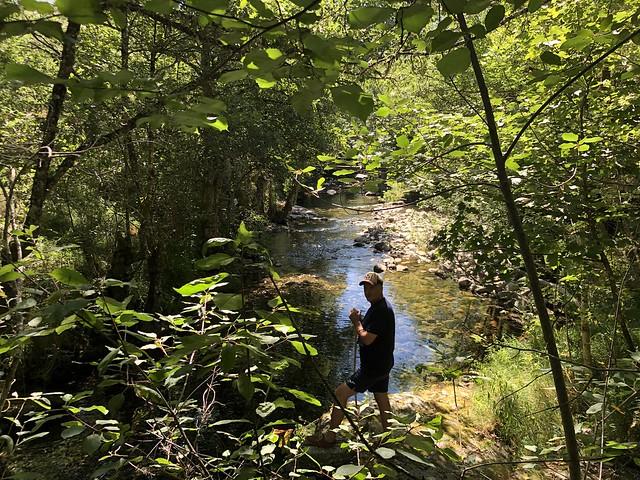 Bosque de ribera en el valle del Burbia (Ancares leoneses, El Bierzo)