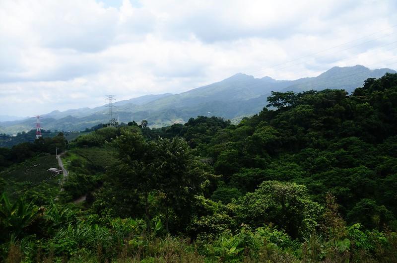 舊砲台山開墾地東北望馬克連稜 2