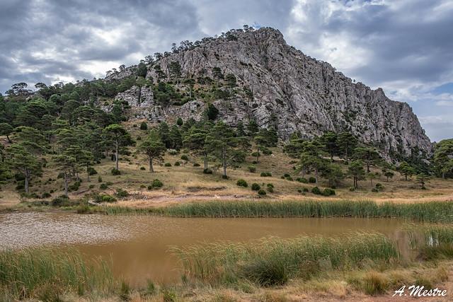 Bassa de la Refoia entre Pauls,Prat de Comte i Horta de Sant Joan