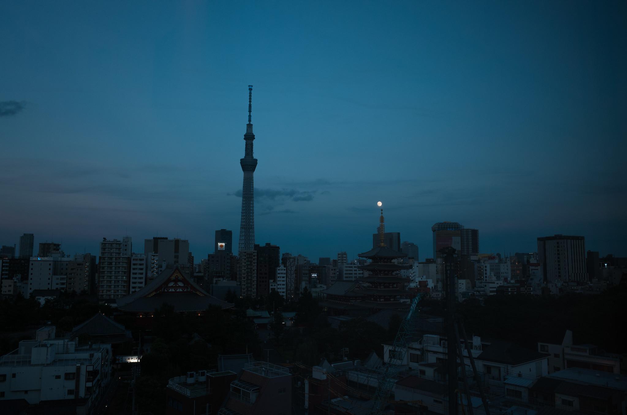 skytree in the dark