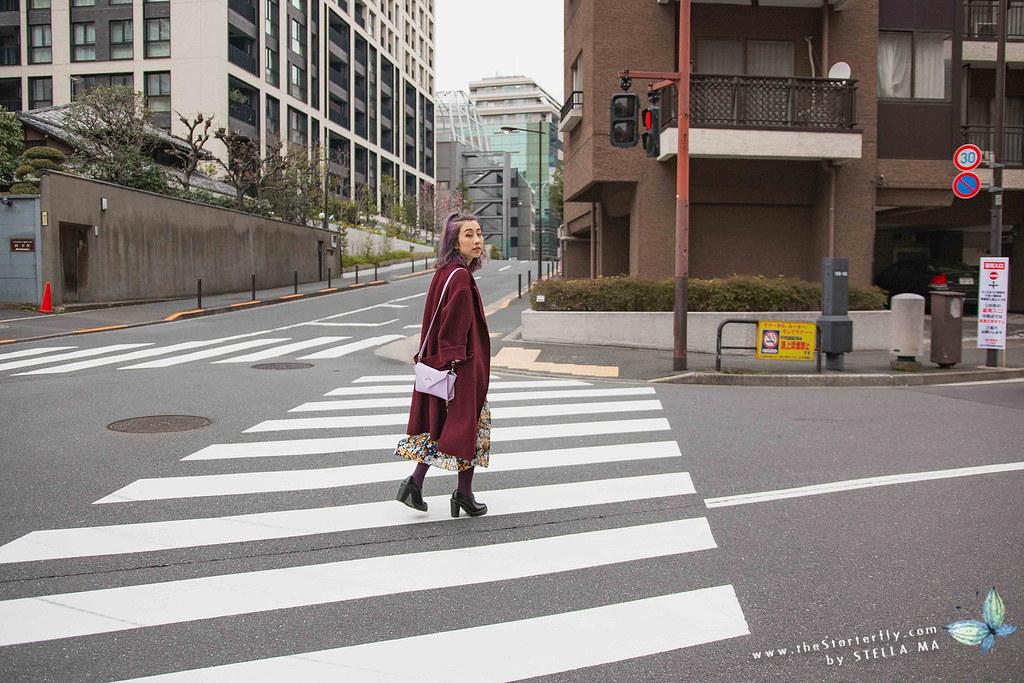 stellama_20170331_Chidorigafuchi-Moat-15