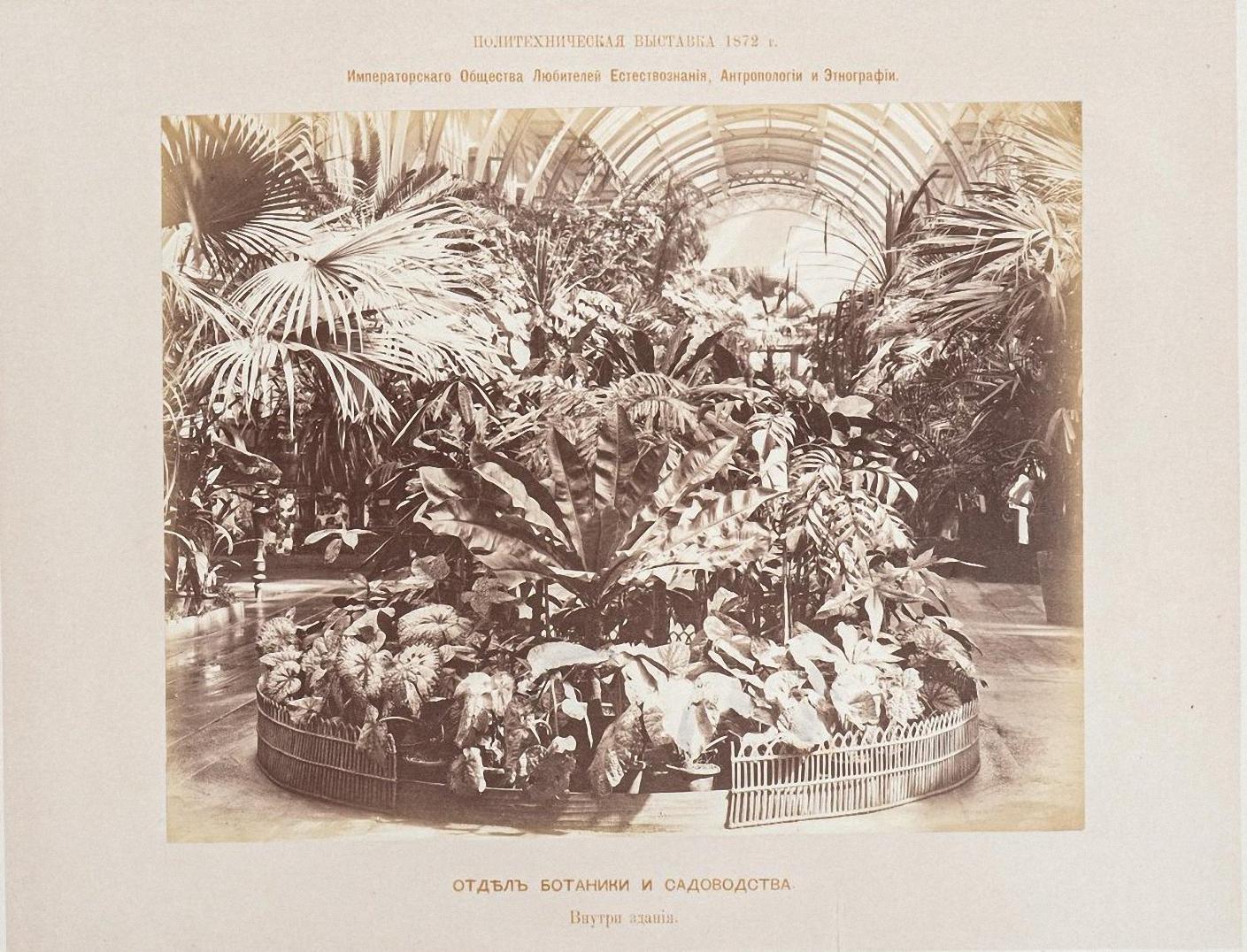 Александровский сад. Павильон ботаники и садоводства. Вид внутри