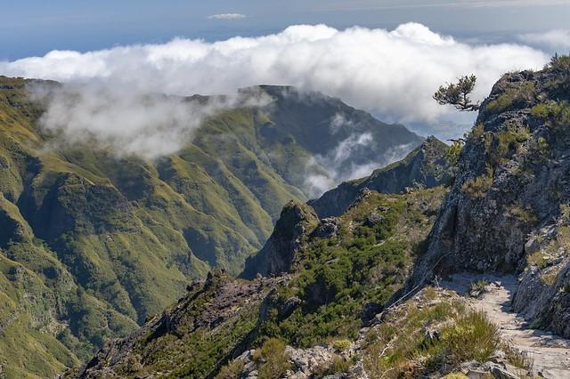 *Madeira @ Pico das Torres*