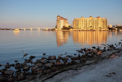 bay bird boat bridge building causeway egret florida morning sarasota