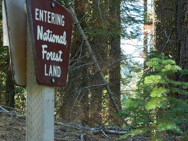 Entering National Forest Land