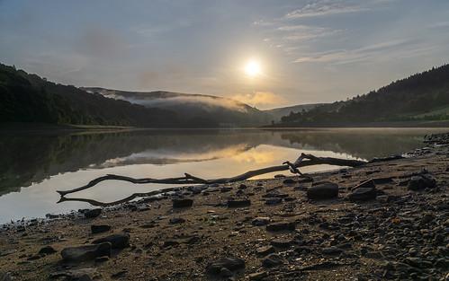 landscape derbyshire peakdistrict darkpeak ladybowerreservoir goldenhour sunrise mist branch woodlandsvalley