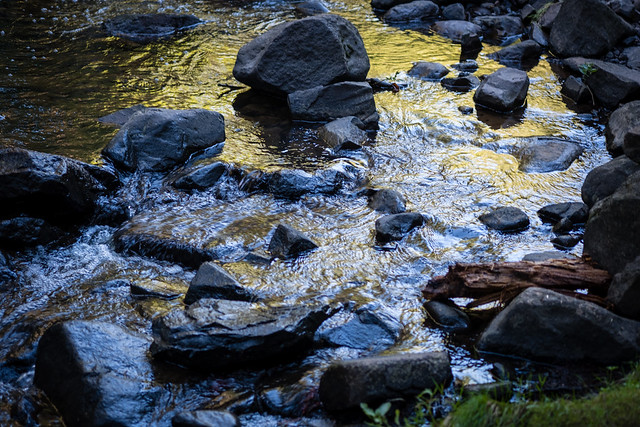 Chester Creek, Duluth 8/12/20