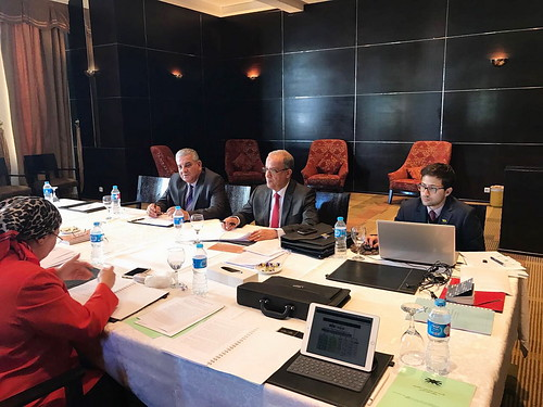 Committee_of_Legal_Experts_Sharm_S_37_27_29_12_16 (03)