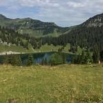 2020_08_12_Oberstockenalp (48)