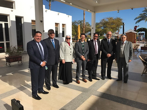 Committee_of_Legal_Experts_Sharm_S_37_27_29_12_16 (04)