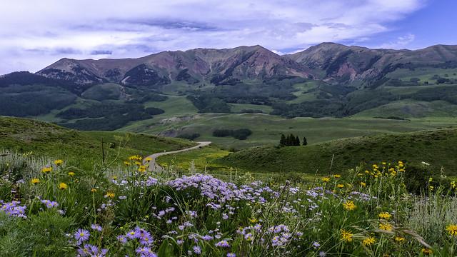 Snodgrass Mountain, Crested Butte, Colorado