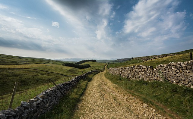 A Lane in the Dales