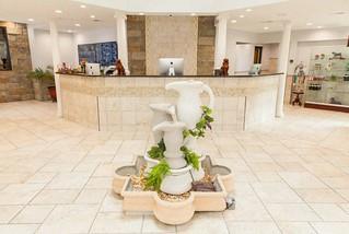 pet hotel Fayetteville, NC