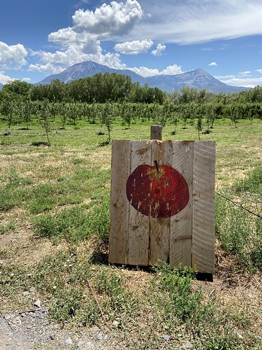 big bs delicious orchards apple trees sign mountain views