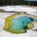 West Geyser (Sapphire Group, Upper Geyser Basin, Yellowstone Hotspot Volcano, nw Wyoming, USA)