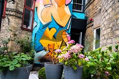 Street Art - Artist: Ola Kalnins