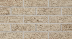 Silver Shadow Bark Bark Texture gray Brick