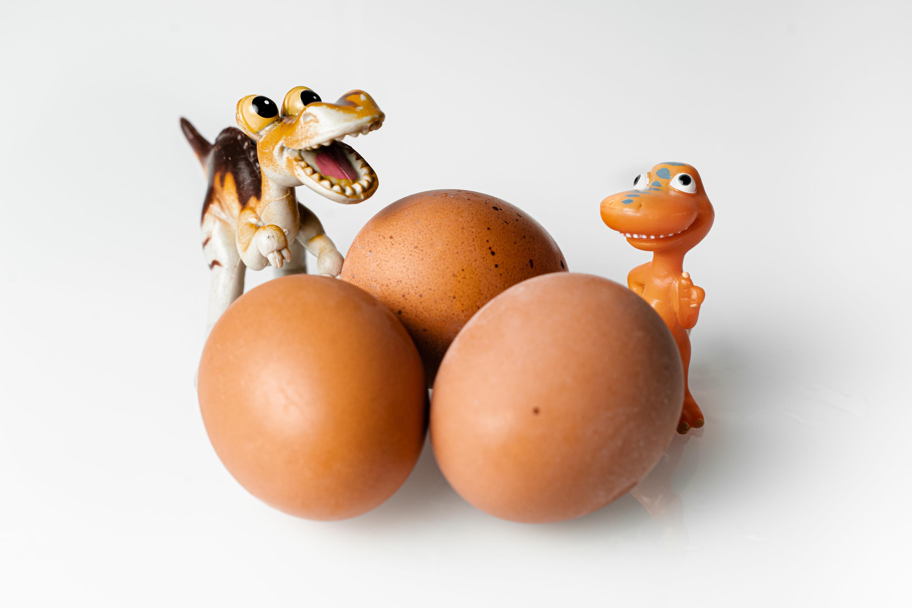 huevos y lacteos para la alimentación de los bebes