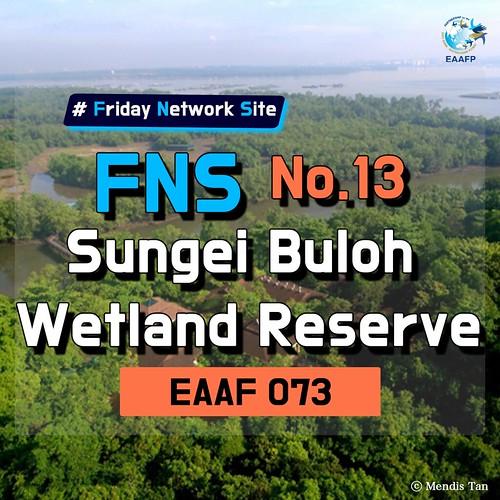 EAAF073 (Sungei Buloh Wetland Reserve) Card News