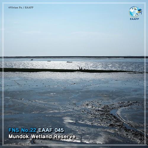 EAAF045 (Mundok Wetland Reserve)