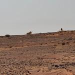 Landscape on the road from Sakaka to al-Ula (7)