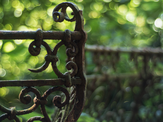 fence and bokeh