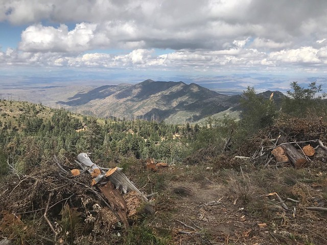 Fuel break looking northeast toward village of Summerhaven atop Mt. Lemmon