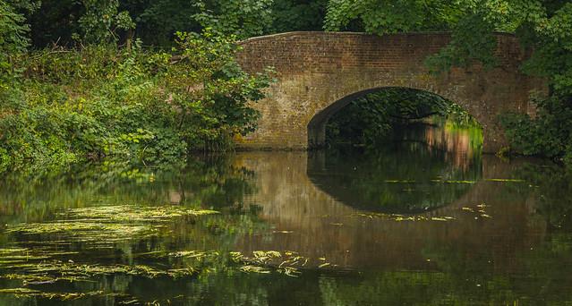 Bridge-7024-Edit.jpg